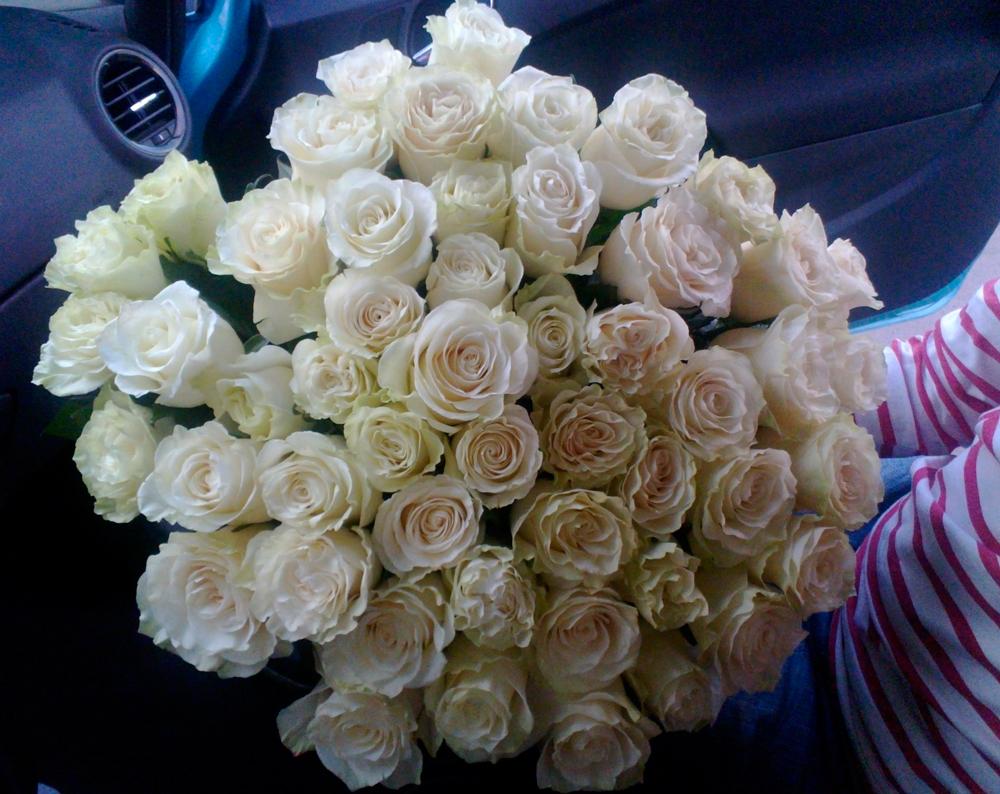 Букет белых голландских роз фото в машине — 7